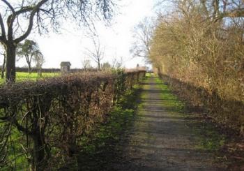 Les sentiers de randonnée de Jolimetz.